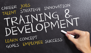 Training & Career Development in High Wycombe